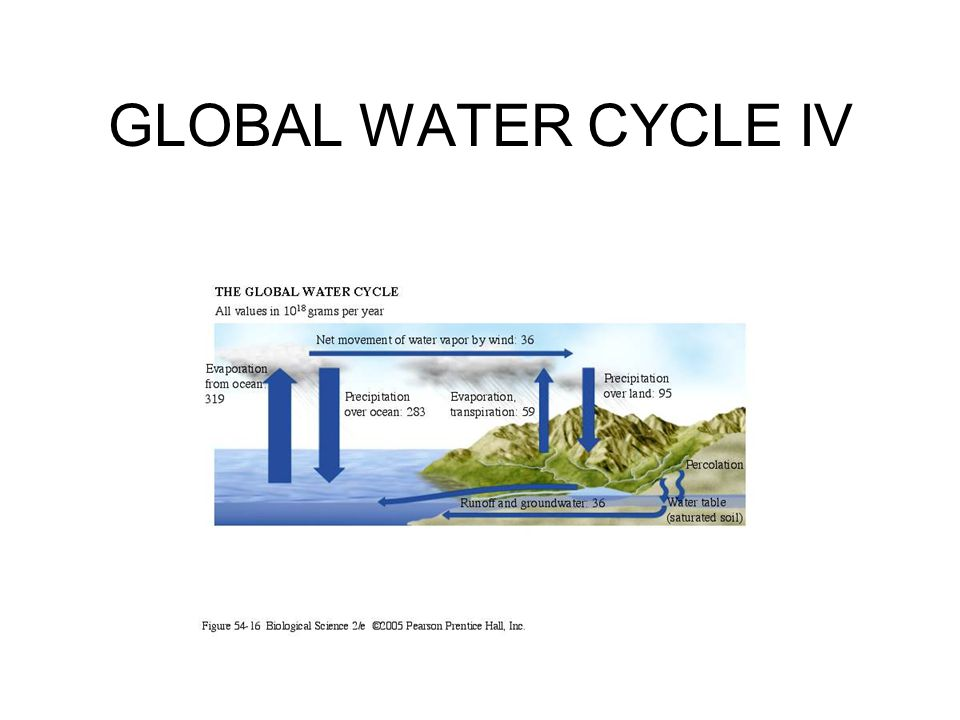 GLOBAL WATER CYCLE IV