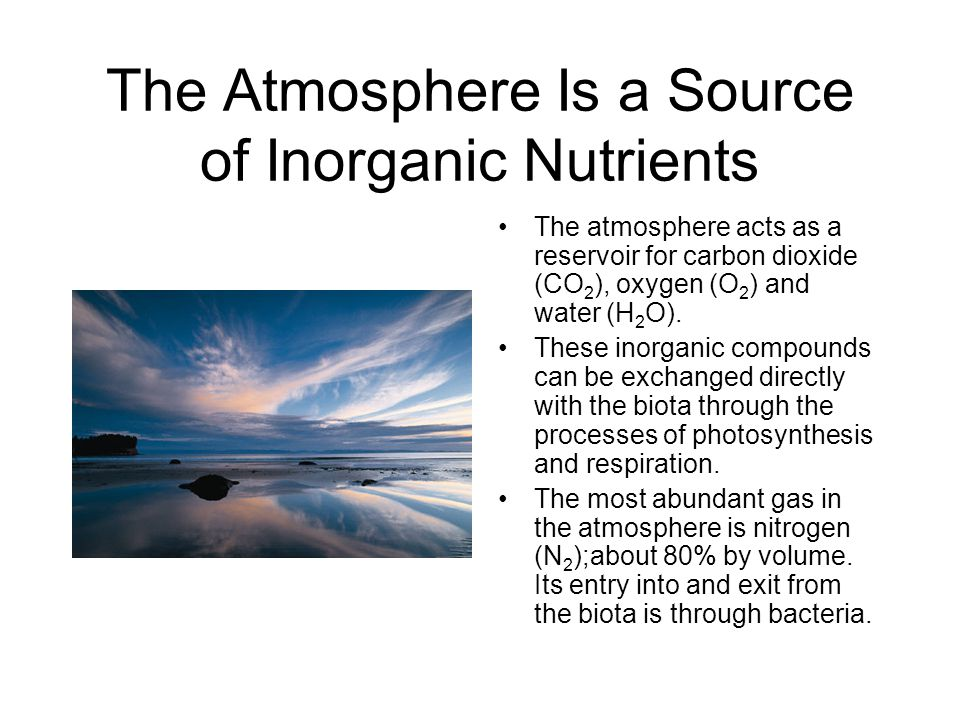 The Atmosphere Is a Source of Inorganic Nutrients