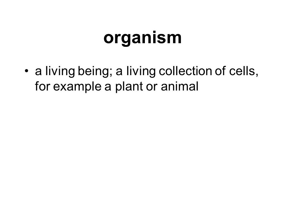 organism a living being; a living collection of cells, for example a plant or animal