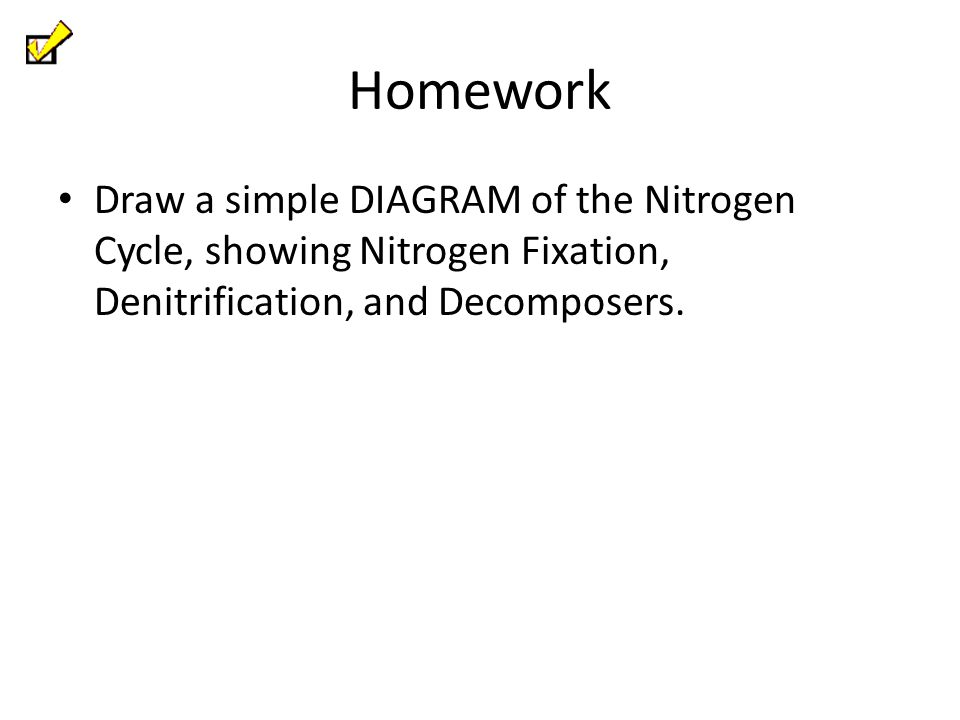 Homework Draw a simple DIAGRAM of the Nitrogen Cycle, showing Nitrogen Fixation, Denitrification, and Decomposers.