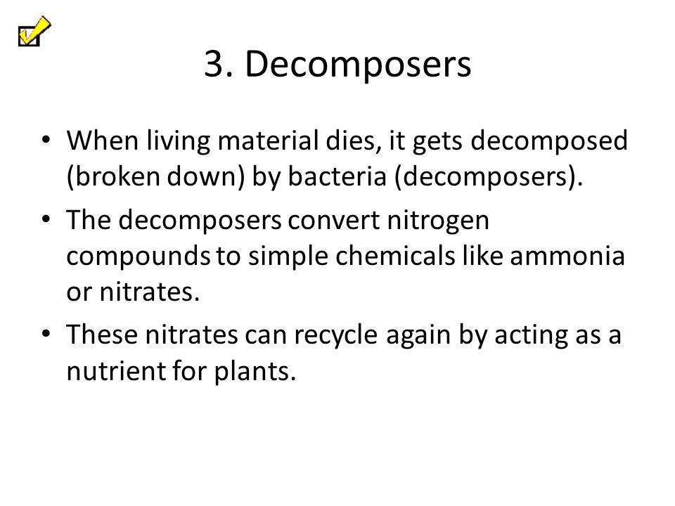 3. Decomposers When living material dies, it gets decomposed (broken down) by bacteria (decomposers).