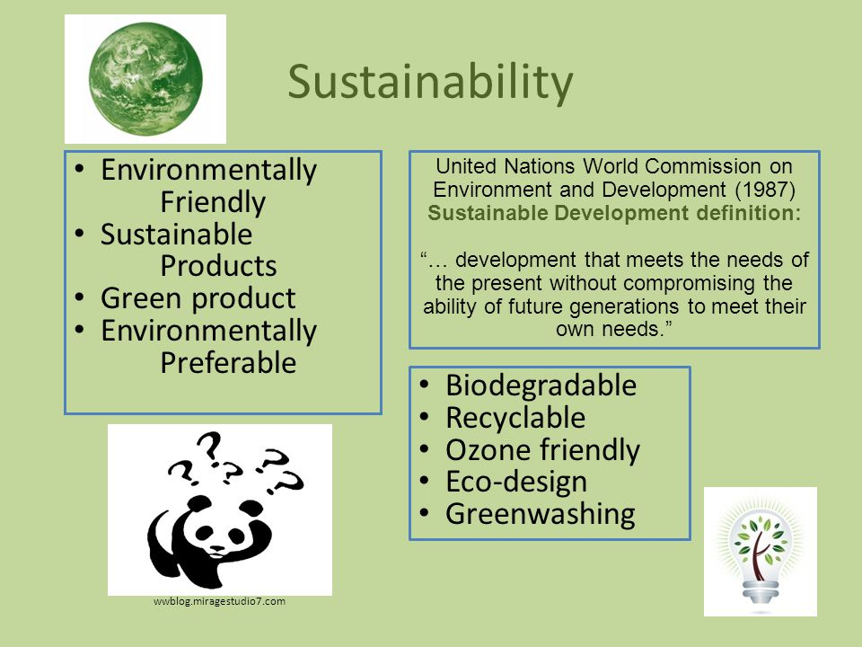 Sustainability Environmentally Friendly Sustainable Products