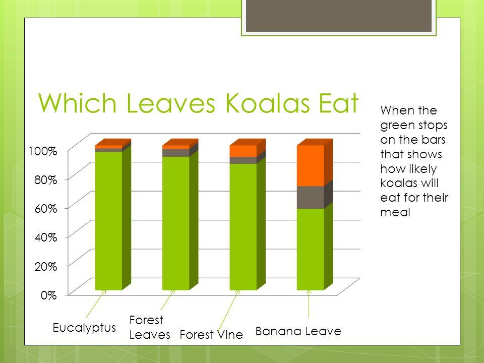 Which Leaves Koalas Eat
