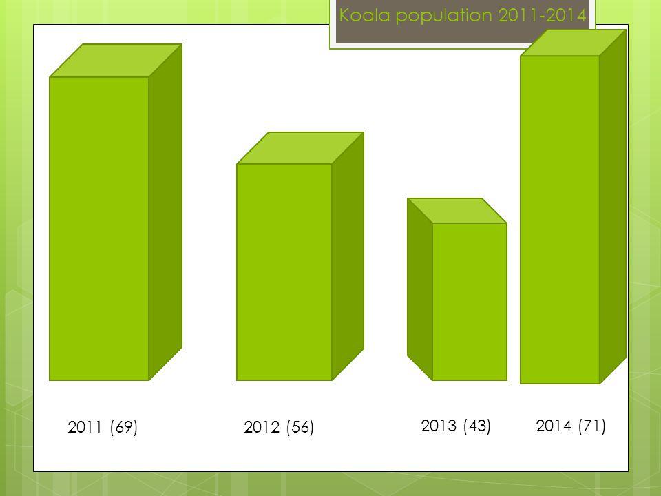 Koala population 2011-2014 2011 (69) 2012 (56) 2013 (43) 2014 (71)