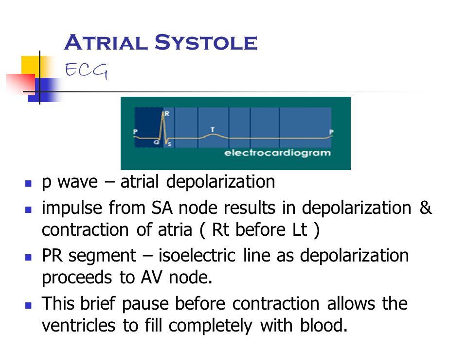 Atrial Systole ECG p wave – atrial depolarization