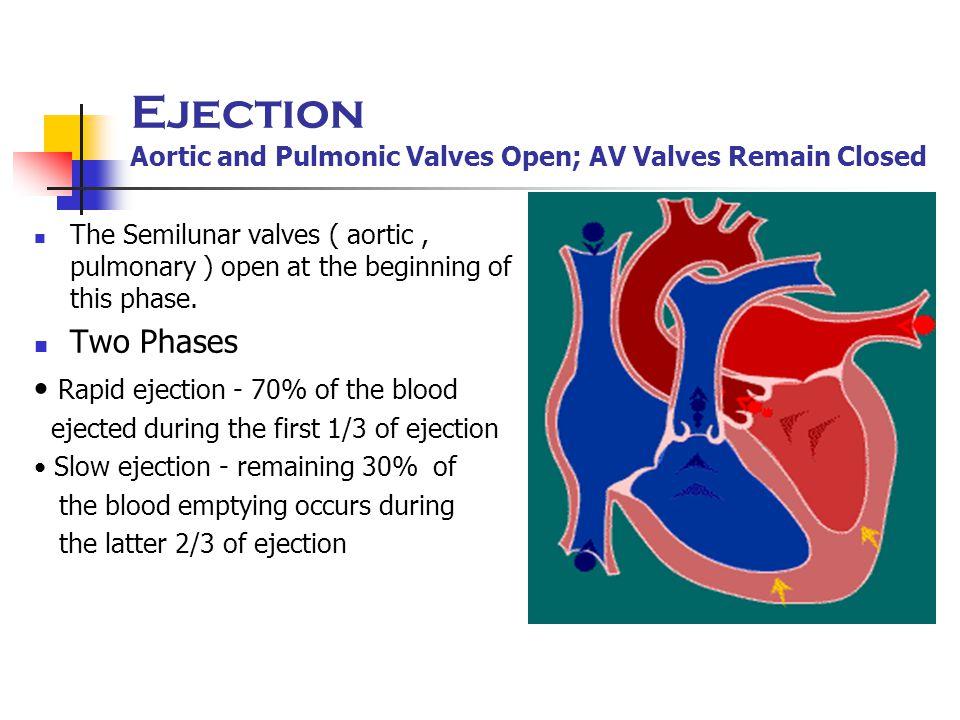 Ejection Aortic and Pulmonic Valves Open; AV Valves Remain Closed