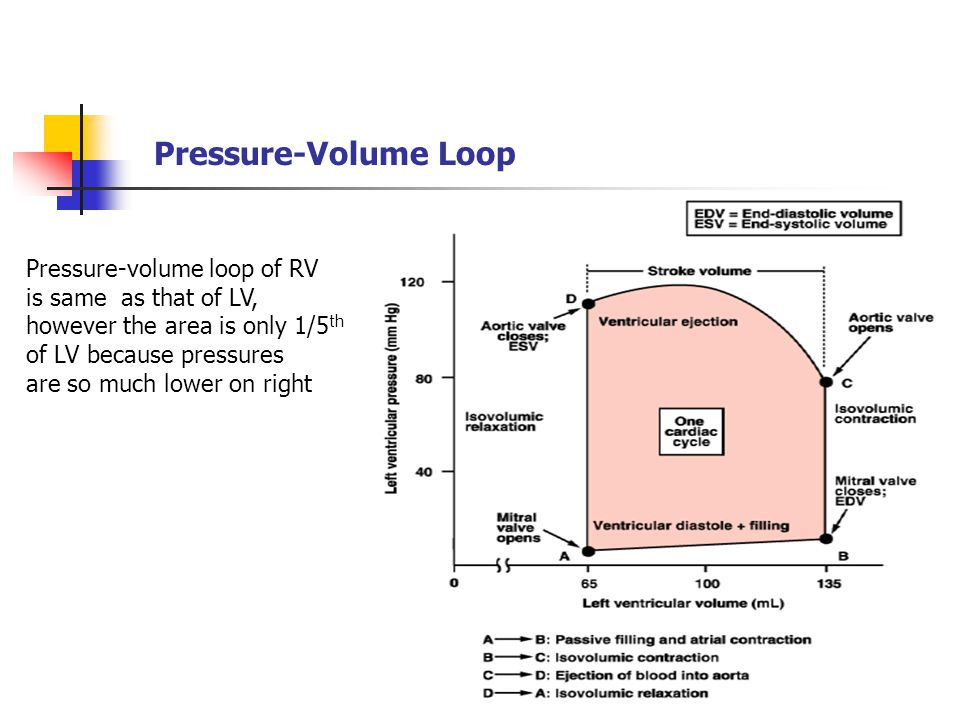 Pressure-Volume Loop Pressure-volume loop of RV is same as that of LV,