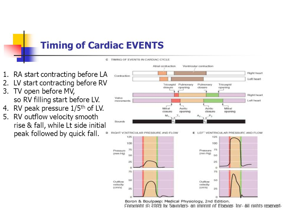 Timing of Cardiac EVENTS