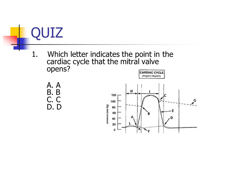 QUIZ 1. Which letter indicates the point in the cardiac cycle that the mitral valve opens.