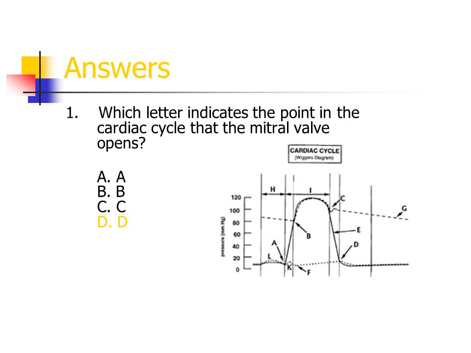 Answers 1. Which letter indicates the point in the cardiac cycle that the mitral valve opens.