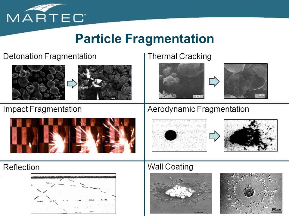 Particle Fragmentation