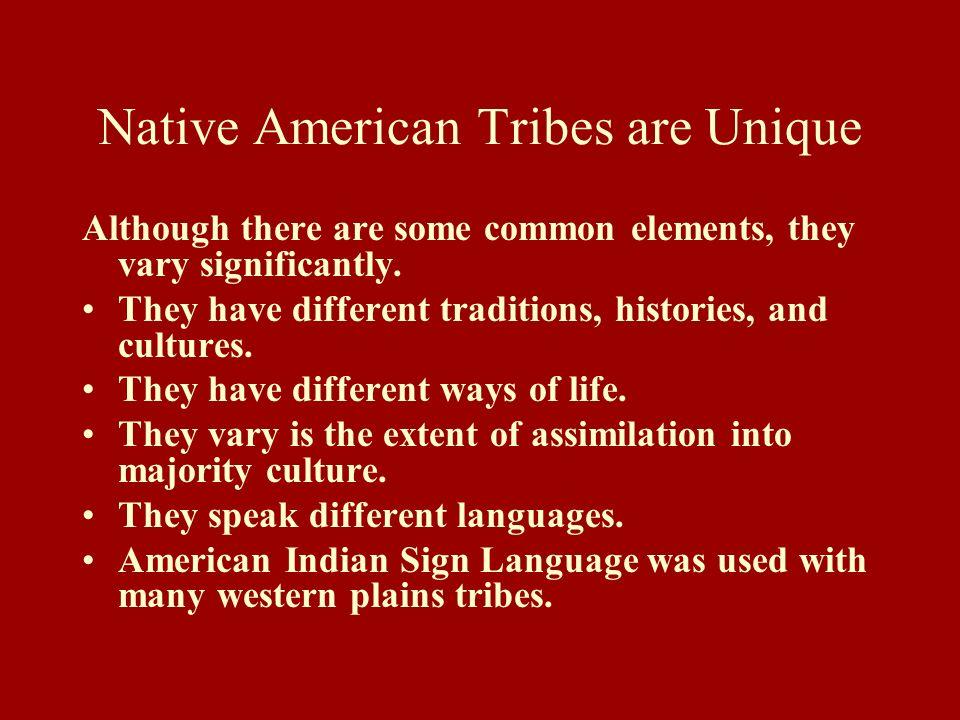 Native American Tribes are Unique