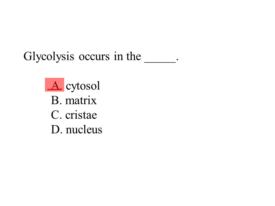 Glycolysis occurs in the _____. A. cytosol B. matrix C. cristae D
