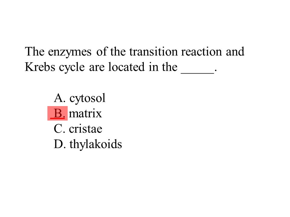 The enzymes of the transition reaction and Krebs cycle are located in the _____. A. cytosol B. matrix C. cristae D. thylakoids