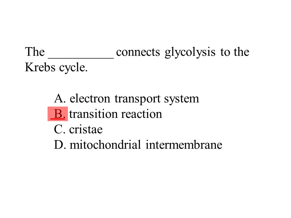 The __________ connects glycolysis to the Krebs cycle. A