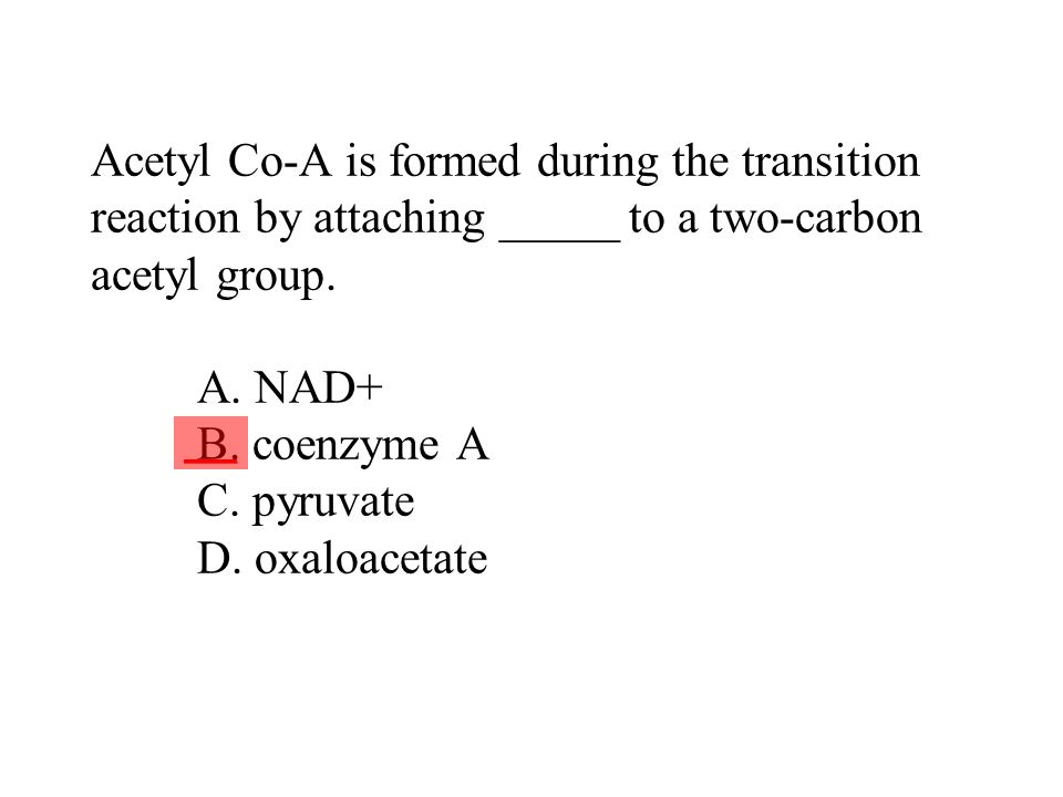 Acetyl Co-A is formed during the transition reaction by attaching _____ to a two-carbon acetyl group. A. NAD+ B. coenzyme A C. pyruvate D. oxaloacetate