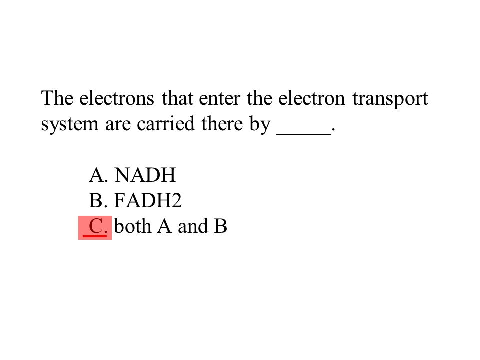 The electrons that enter the electron transport system are carried there by _____. A. NADH B. FADH2 C. both A and B