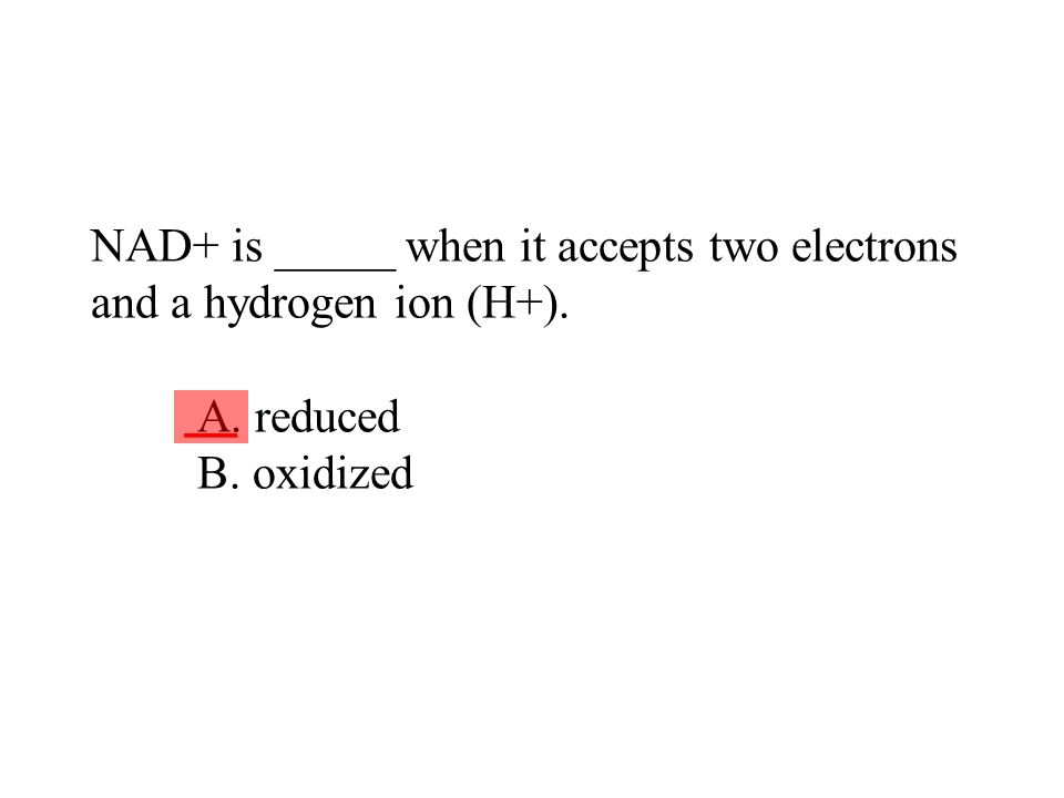 NAD+ is _____ when it accepts two electrons and a hydrogen ion (H+). A