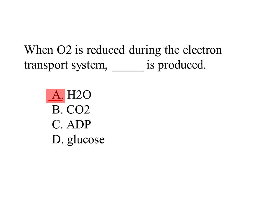 When O2 is reduced during the electron transport system, _____ is produced. A. H2O B. CO2 C. ADP D. glucose