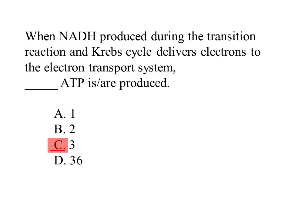 When NADH produced during the transition reaction and Krebs cycle delivers electrons to the electron transport system, _____ ATP is/are produced. A. 1 B. 2 C. 3 D. 36