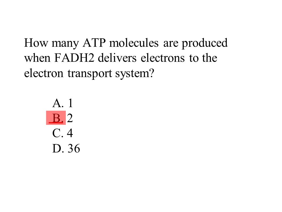 How many ATP molecules are produced when FADH2 delivers electrons to the electron transport system A. 1 B. 2 C. 4 D. 36