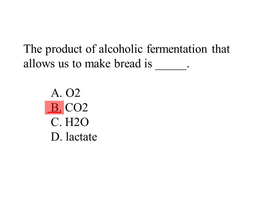 The product of alcoholic fermentation that allows us to make bread is _____. A. O2 B. CO2 C. H2O D. lactate