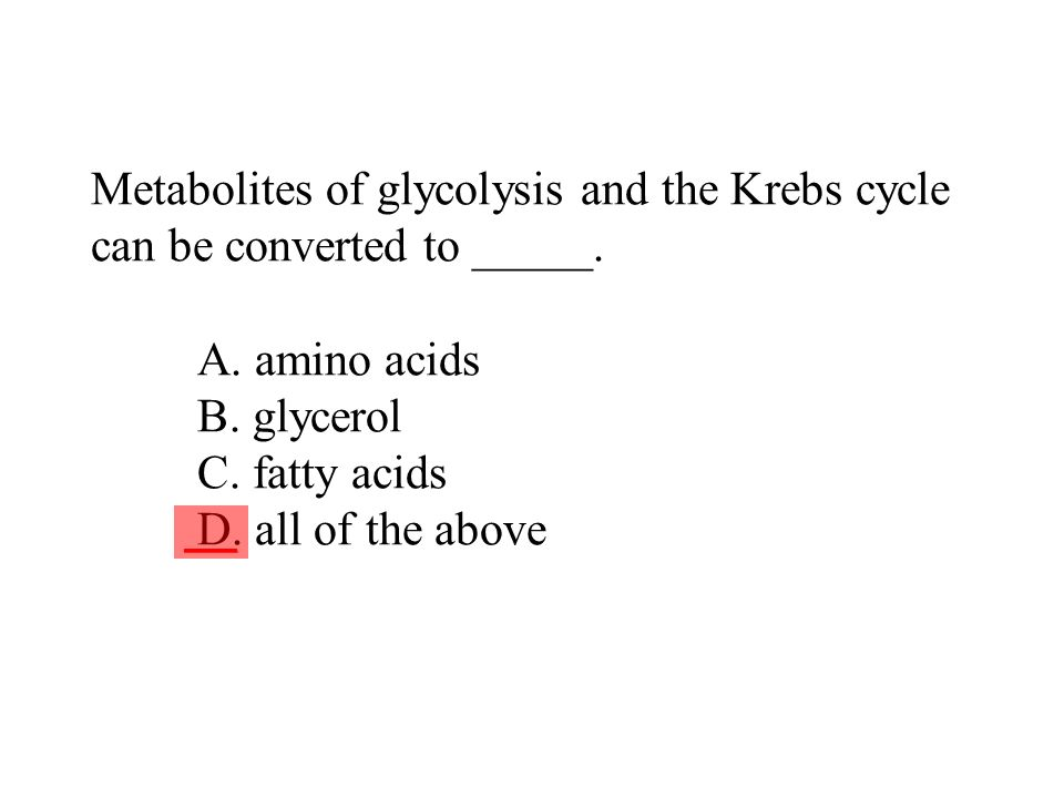 Metabolites of glycolysis and the Krebs cycle can be converted to _____. A. amino acids B. glycerol C. fatty acids D. all of the above