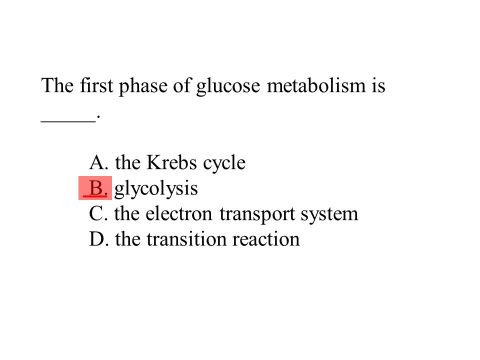 The first phase of glucose metabolism is _____. A. the Krebs cycle B