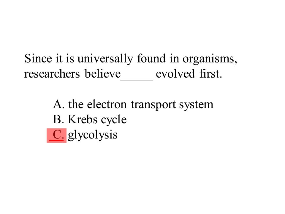Since it is universally found in organisms, researchers believe_____ evolved first. A. the electron transport system B. Krebs cycle C. glycolysis