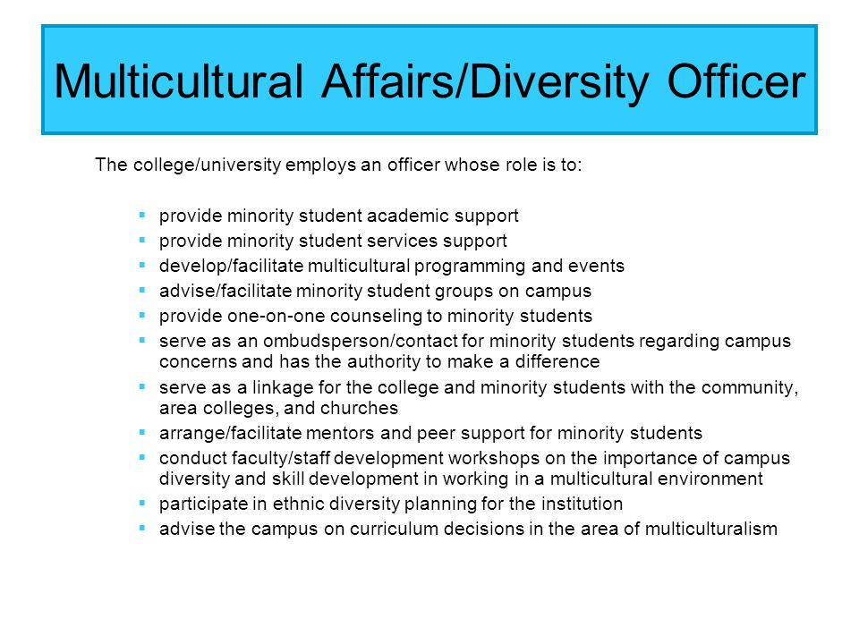Multicultural Affairs/Diversity Officer