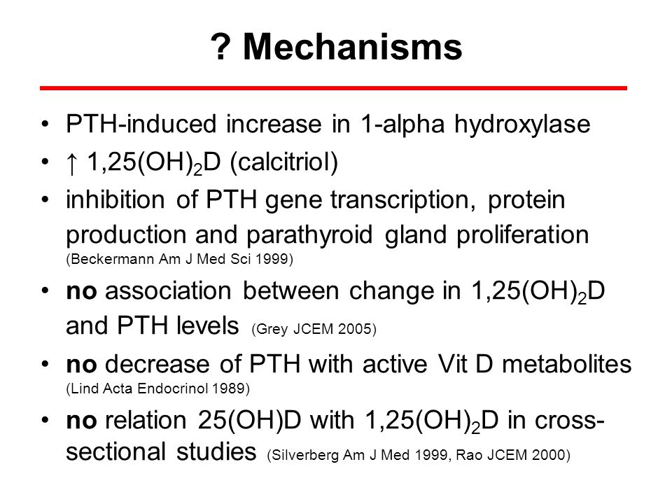 Mechanisms PTH-induced increase in 1-alpha hydroxylase