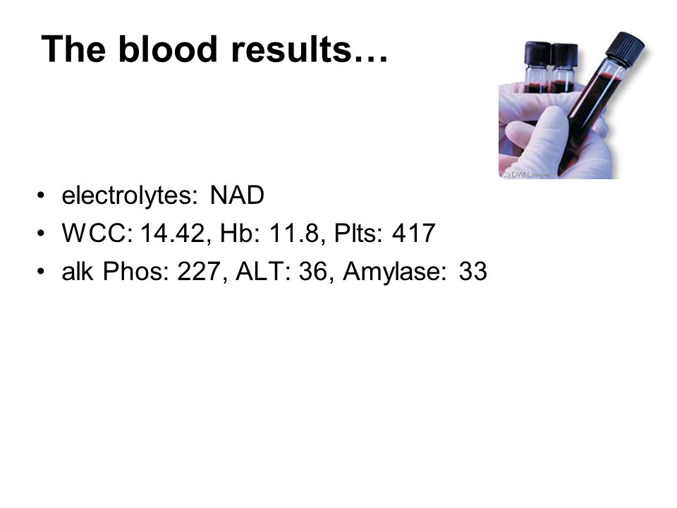 The blood results… electrolytes: NAD WCC: 14.42, Hb: 11.8, Plts: 417