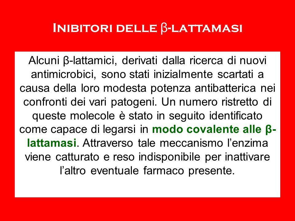 Inibitori delle β-lattamasi