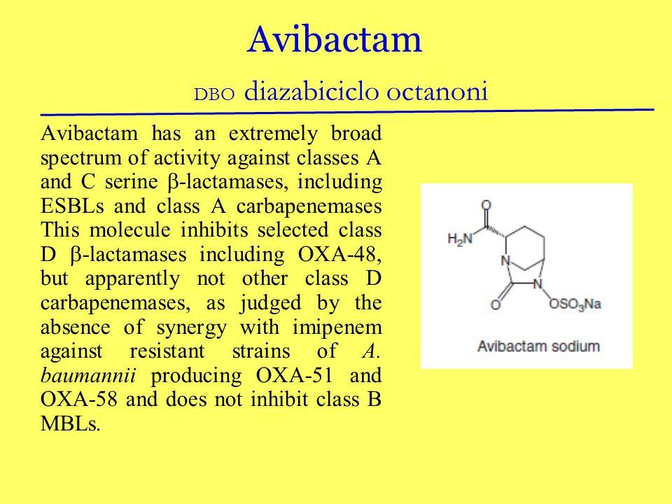 Avibactam DBO diazabiciclo octanoni