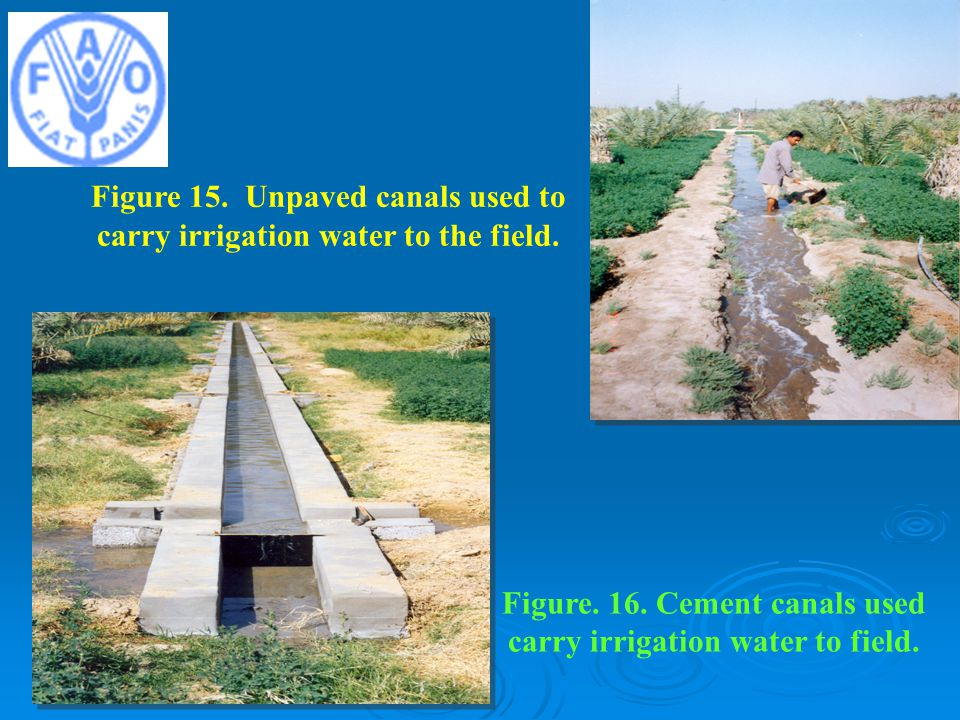 Figure 15. Unpaved canals used to carry irrigation water to the field.
