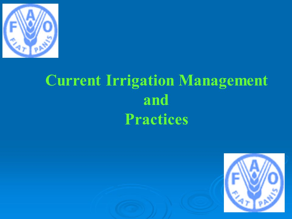 Current Irrigation Management