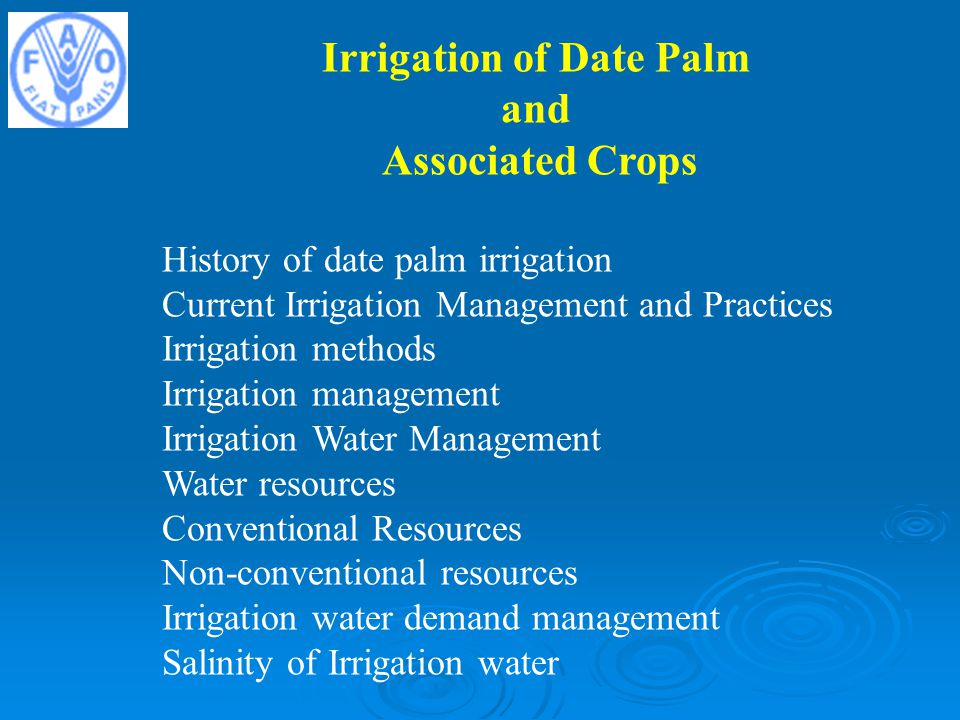 Irrigation of Date Palm
