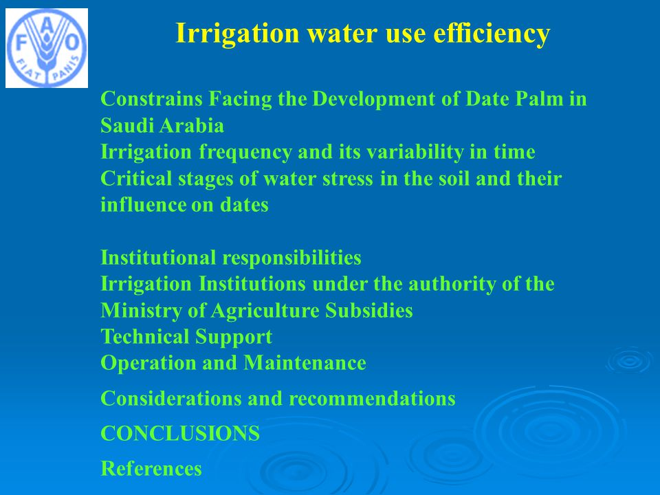Irrigation water use efficiency