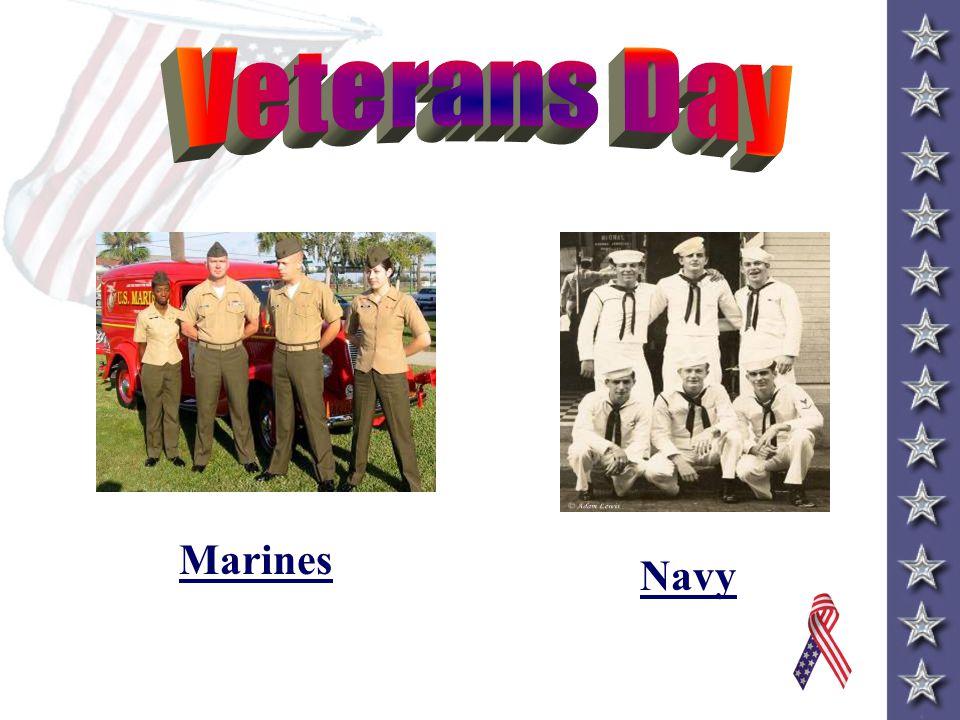 Veterans Day November 11, 2012