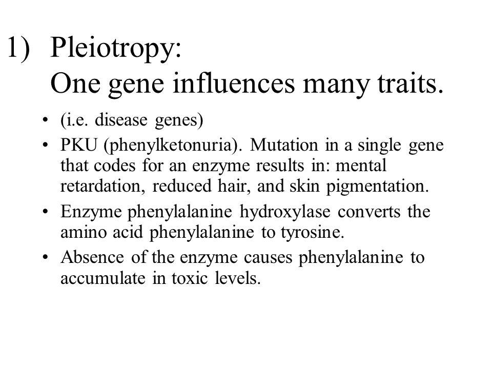 Pleiotropy: One gene influences many traits.
