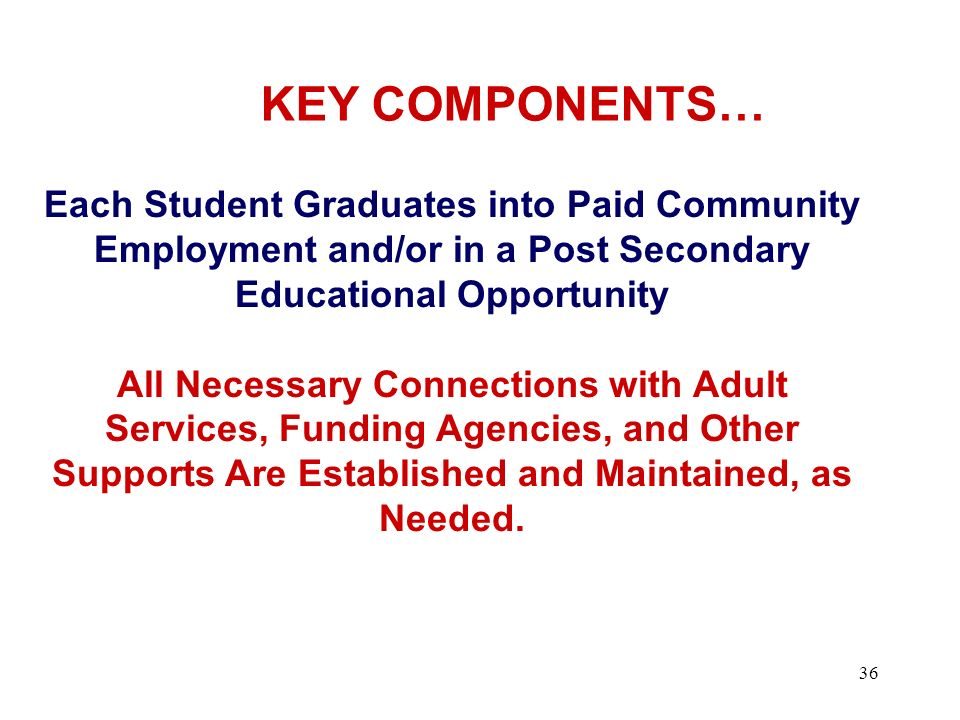 KEY COMPONENTS… Each Student Graduates into Paid Community Employment and/or in a Post Secondary Educational Opportunity.