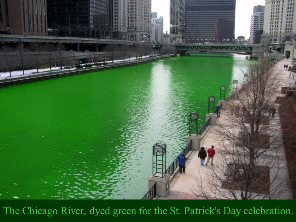 The Chicago River, dyed green for the St. Patrick s Day celebration.