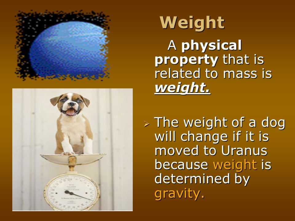 Weight A physical property that is related to mass is weight.