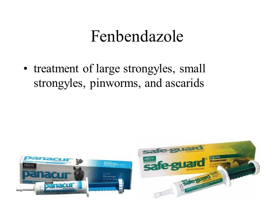 Fenbendazole treatment of large strongyles, small strongyles, pinworms, and ascarids