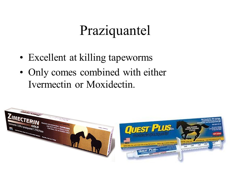 Praziquantel Excellent at killing tapeworms