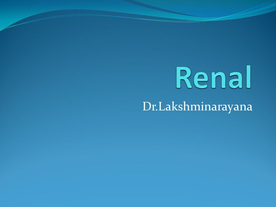 Renal Dr.Lakshminarayana