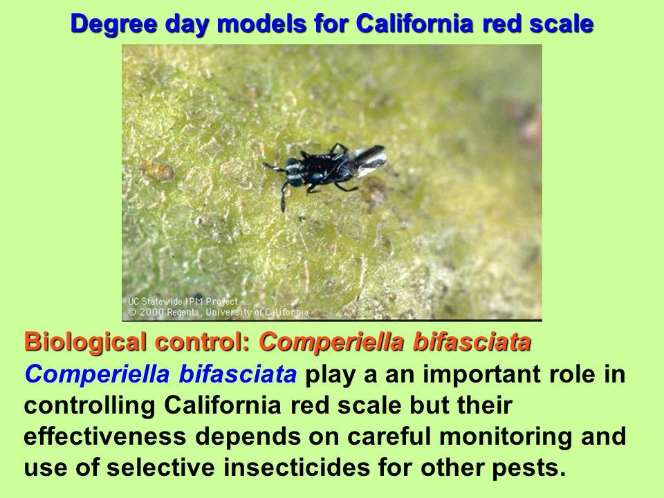 Biological control: Comperiella bifasciata