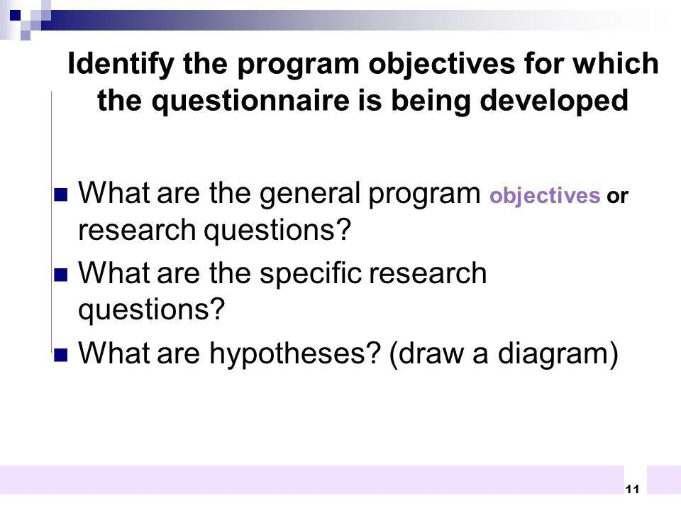 What are the general program objectives or research questions