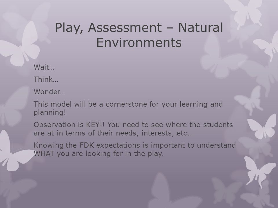 Play, Assessment – Natural Environments