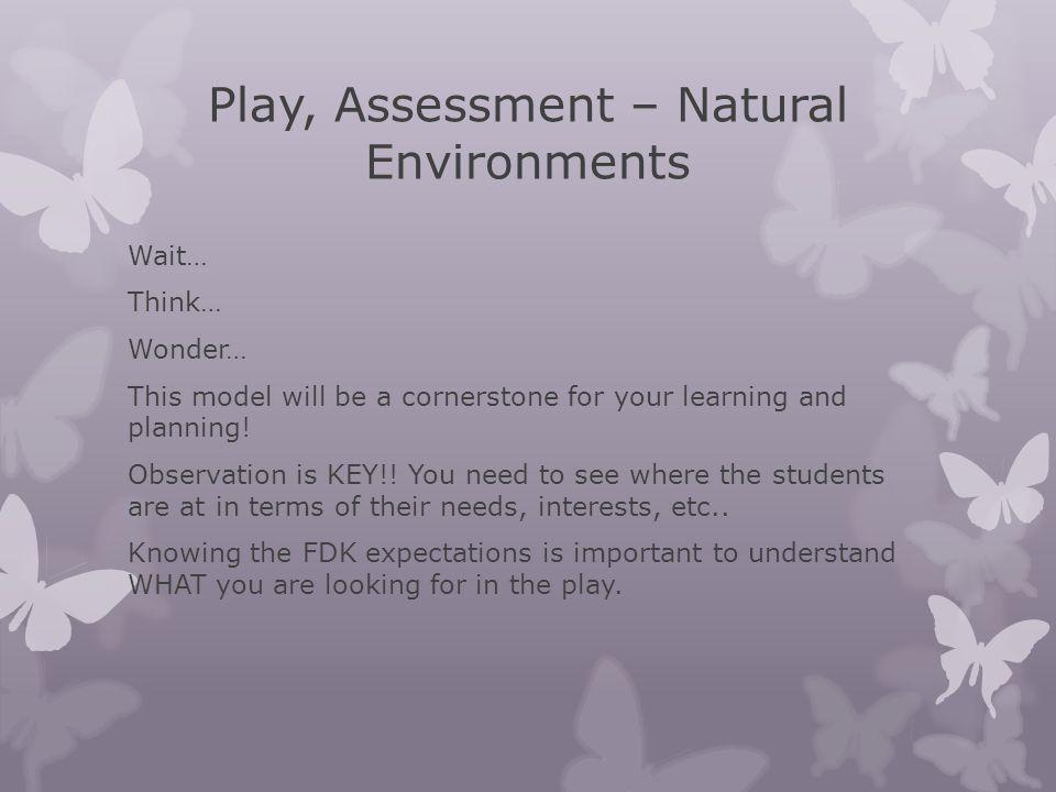 Play, Assessment – Natural Environments